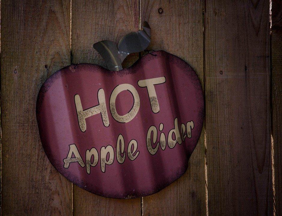 Apple Cider Vinegar Weight Loss 2