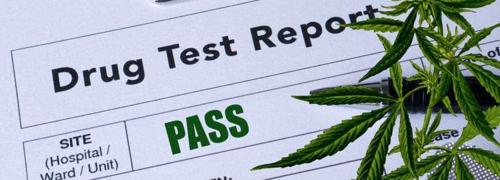 CBD Test